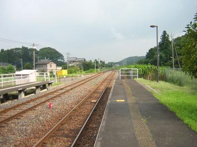 20060918karasu8