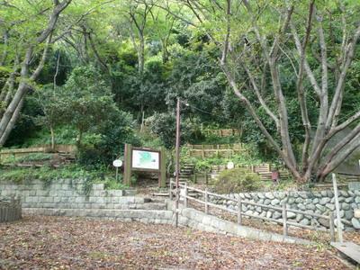 20070909shinkanbara3