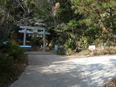 20080104tsuno9