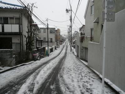 20080203yuki