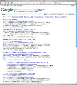 20090131google
